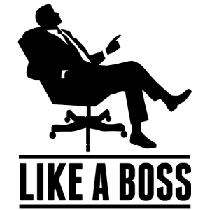Like A Boss Graphic
